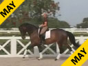 Available on DVD No.26<br>Day 1<br>Betsy Steiner<br>Riding & Lecturing<br>Naomi<br>KWPN<br>11 yr. old Mare<br>Training: Grand Prix<br>Owner: Janet Bell<br>Duration: 47 minutes