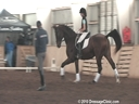 NEDA Fall Symposium<br> Steffen Peters<br> & Shannon Peters<br> Assisting<br> Hannah McCabe<br> GB Classic<br> Rheinland<br> 16 yrs, old Gelding<br> Training: 2nd Level<br> Duration: 41 minutes