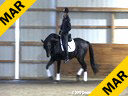 Michael Klimke Assisting John Lee Amber Shakespeare by: Sandro Hit 6 yrs. old Stallion Training: 2nd/3rd Level Duration: 49 minutes