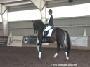 NEDA Fall Symposium<br> Steffen Peters<br> & Shannon Peters<br> Assisting<br> Allison Brock<br> Rosevelt<br> Hanoverian<br> 8 yrs. old<br> Training: PSG/ Intermediaire-1<br> Duration:32 minutes