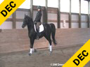 Jeremy Steinberg Assisting Jess Havey Rubinous 9 yrs. old Stallion Oldenberg By: Rubinstein Owned by:Dreamscape Farm Training: 3rd Level Duration: 50 minutes