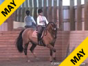 Jeremy Steinberg<br> Assisting<br> Esmee Ingham<br> Norrhsman<br> Sweedish<br> 14 yrs. old Gelding<br> Training: Young Riders<br> Duration: 53 minutes
