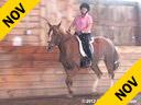 Mette Rosencrantz<br> Riding & Lecturing<br> Taison<br> KWPN<br> Dutch Warmblood<br> 11 yrs. old Gelding<br> by: Negro<br> Training: GP Level<br> Owner: Mette Rosencrantz<br> Duration: 35 minutes