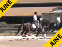 USDF APPROVED<br> University Accreditation<br> Steffen Peters<br> Riding & Lecturing<br> Lord ChalKhill<br>Oldenburg<br> 4 yrs. old Stallion<br>Training: 1st Level<br> Duration:25 minutes