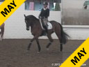 Jeremy Steinberg Assisting Shauntel Bryant Harmony Hanoverian by: Hohenstein 4 yrs. old Mare Training: 2nd Level Owner: Sandi Fortun Duration: 38 minutes