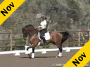 Elizabeth Ball<br>Riding and Lecturing<br>Orion<br>12 yrs. old KWPN<br>by: Fleminghn<br>Training: Grand Prix<br>Duration: 45 minutes