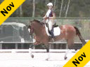 Shannon Dueck<br>Riding and Lecturing<br>Ayscha<br>8 yrs. Old Mare<br>Oldenburg<br>Training: Grand Prix<br>Duration: 45 minutes