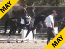 USDF APPROVED University Accreditation Steffen Peters Assisting Alaska Culmore Don Gasparo 3 yrs. old Hanoverian Gelding Training Level Duration 25 Minutes