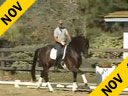 USDF APPROVED<br> University Accreditation<br> Steffen Peters<br>Riding & Lecturing<br>San Rubin<br>Oldenburg<br>5 yrs. old Stallion<br>Training: FEI <br>Duration: 28 minutes