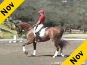 USDF APPROVED University Accreditation Steffen PetersRiding & LecturingSantiago9 yrs. old KWPNTraining: 3rd LevelDuration: 29 minutes