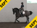 Arthur Kottas<br>Lecturing<br>Work in Hand<br>Casino Royal<br>Oldenburg<br>8 yrs. old Gelding<br>Training: 3rd Level<br>Owner: Kim Noon<br>Duration: 29 minutes