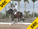 Kathy Connelly Assisting Ryan Yap ZZ Top KWPN 4 yrs. old Gelding Training: First Level Owner: Kathy Connelly Duration: 25 minutes