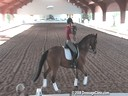 USDF Trainers Conference<br>USDF APPROVED<br> University Accreditation<br>Day 2<br>Henk van Bergen<br>Assisting<br>Melissa Allen<br>Daina<br>12 yrs. old Mare<br>Hanovarian<br>Owner: Melissa Allen<br>Duration: 60 minutes