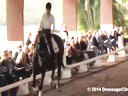 USDF Trainers Conference<br> Day 2<br> Steffen Peters<br> Assisting<br> Jessica Jo Tate<br> Faberge<br> Westfalen<br> 10 yrs. old Gelding<br> Owner: Elizabeth Guerlsco-Wolf<br> Duration: 29 minutes