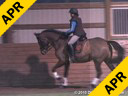 Jeremy Steinberg Assisting Jill Andersen Sophie Hanoverian 11 yrs. Old Mare Training: 3rd Level Duration: 36 minutes