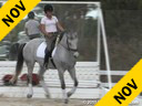 Anja Plonzke<br> Riding & Lecturing<br> Le Mont D'or<br> 12 yrs. Gelding<br> Training: GP Level<br> Owner: Anja Plonzke<br> Duration: 34 minutes