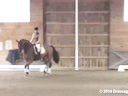 NEDA Ingrid Klimke Assisting Anabell Sattler Franconia 5 yrs. Old Mare Hanoverian by: Fidertanz Owner: Anabell Sattler Duration: 34 minutes