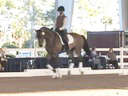 Available on DVD No.8<br>PRCS Professional Riders Clinic Symposium<br>Hubertus Schmidt<br>Assisting<br>Jan Brons<br>Jim Brandon<br>Equestrian Center<br>Wellington Florida<br>Duration: 43 minutes