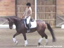 NEDA Fall SymposiumIngrid Klimke Assisting Heidi Conlon Donnazauber 13 yrs. Old Gelding Training: GP Duration: 22 minutes
