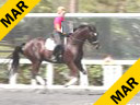 Available on DVD No.16<br><br>Betsy Steiner<br>Riding & Lecturing<br>Titaan<br>KWPN<br> 5 yr. old Gelding<br>Training: Level 1<br>Duration: 39 minutes