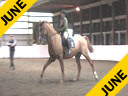 USDF Trainers Conference<br>Day 2<br> Henk van Bergen<br> Assisting<br> Shawna Harding<br> Come On III<br> 11 yrs. old Gelding<br> Danish Warmblood<br> Owner: Shawna Harding<br> Duration: 14 minutes
