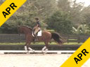 Volker Brommann<br> Assisting<br> Robyn Dorius<br> Estrella Fachenda R<br> 16 yrs. Old Andalusian Mare<br> by: Altivo<br> Training: 1st Level<br> Duration: 25 minutes