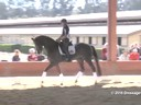 USDF<br> West Coast Trainers Conference<br> Stephen Clarke<br> Assisting<br> Amelia Newcomb<br> Gatsby<br> 5 yrs. Old Gelding<br> KWPN<br> Duration: 38 minutes