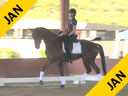 USDF<br> West Coast Trainers Conference<br> Stephen Clarke<br> Assisting<br> Cyndi Jackson<br> Sir Amour<br> 5 yrs. Old Gelding<br> Hanoverian<br> Owner: Schuttler Stables LLC<br> Duration: 30 minutes
