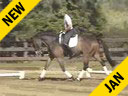 USDF APPROVED<br> University Accreditation<br> Steffen Peters<br> Riding & Lecturing<br> Lombardi<br> 15 yrs. old Holsteiner Gelding<br> Training: Grand Prix<br> Del Mar, California<br> Duration: 42 minuets