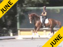 NEDA<br>Rien van der Schaft<br> Assisting<br> Grace Goodby<br> Schabos Waitongo<br>& 18 yrs. old Gelding<br>  Callie O'Connell<br> Ferry<br> 5 yrs. old Gelding<br> Duration: 34 minutes