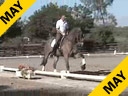 USDF APPROVED University Accreditation Steffen Peters Riding & Lecturing Lombardi 11 yrs. old Gelding Holsteiner Owner: Peggy & Fred Furth Training: GP Level Duration: 35 minutes
