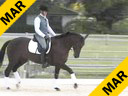 Jan Brons<br> Riding & Lecturing<br> Whisper<br> KWPN<br> 5 yrs. old<br> Training: 2nd Level<br> Duration: 43 minutes