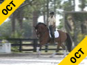 Mette Rosencrantz Riding & Lecturing Finally 10 yrs. old Gelding Hanoverian by: De Niro Training: I/1 Level Owner: Finally Partners LLC. Duration: 36 minutes