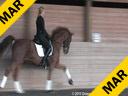 Ellen Bontje<br> Assisting<br> Dominique Culham<br> Utango<br> 8 yrs. old Gelding<br> by: Contango<br> Owner: Denise Turner<br> Training:3rd Level<br> Duration: 33 minutes