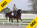Available on DVD No.29<br>Volker Brommann<Br>Riding & Lecturing<br>Nienke<br>KWPN<br>11 yrs. old Mare<br>Owner: Charmayne Harrah<br>Training:Prix St. George<br>Duration: 26 minutes