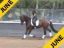 Mette Rosencrantz Riding & Lecturing Herz Regent Hanoverian 4 yrs old Gelding By: Hotline/Alabaster Owner: Finally Partners LLC Trainig: Training Level Duration: 28 minutes