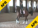 Arthur Kottas<br> Assisting<br> Suzanne Mente<br> Dior<br> Hanoverian TB<br> 22 yrs. old Gelding<br> Training: 3rd Level<br> Owner: Bonnie Miller<br> Duration: 49 minutes
