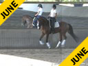 J.J.Tate<br> Riding & Lecturing<br> Faberge<br> Westphalian<br> By: Florestan<br> 9 yrs. old Gelding<br> Training: 1-1- Level<br> Owner: Elizabeth Guarisco-Wolf<br> Duration: 42 minutes