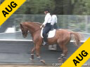 Day 2<br>Heather Blitz<br>Riding & Lecturing<br>Dona Linda<br>by: Don Schufro<br>Danish Warmblood<br>10 yrs. old Mare<br>Training: I-1<br>Owner: Francie Stirling<br>Duration: 38 minutes
