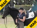 Jane Hannigan Riding & Lecturing Real Love 6 yrs. old Old Mare Oldenburg Training: 2nd Level Wellington Florida Duration: 18 minutes