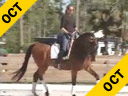 Shannon DueckAssistingBeatric BennettCoronaKWPN14 yrs. oldTraining: Grand PrixDuration: 37 minutes