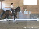 NEDA Spring Symposium<br>Terry Gallo &<br> Lois Yukins<br> Assisting<br> Susan Rainville<br> Tatoo<br> 11 yrs. old Lusitano Gelding<br> Training: 2nd Level Freestyle<br> Duration: 26 minutes