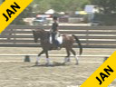 USDF APPROVED University Accreditation Steffen Peters Assisting Michelle Reilly Maximus Dutch Warm Blood 13 yrs. old Gelding Training: PSG Level Duration: 38 minutes