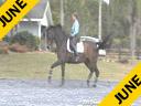 Bo Jena<br> Assisting<br> Jennifer Beaumert<br> Lancelot<br> Danish<br> 12 yrs. old Gelding<br> Training:GP<br> Duration: 34 minutes