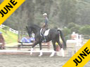 USDF APPROVED<br>University Accreditation<br> Steffen Peters<br> Riding & Lecturing<br> Prince<br> 11 yrs. old KWPN<br> by:Hemingway<br> Owner: DG Bar Ranel<br> Training: GP level<br> Duration: 43 minutes
