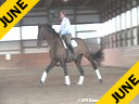 Jeremy Steinberg Assisting Andreas Stano Odyssey 13 yrs. old Gelding KWPN by: Roemer Owned by: Andreas Stanoand Gail Herrell Training: PSG level Duration: 55 minutes