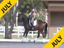 Betsy Steiner<br> Riding & Lecturing<br> Walentino<br> 13 yrs. Old Gelding<br> Dutch<br> Training: PSG Level<br> Owner: Michele Fragner<br> Duration: 29 minutes