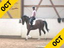 Ulla Salzgeber Assisting Chris Hickey Champ Bavarian 6 yrs. old Gelding Training: 4 M Level Duration: 32 minutes