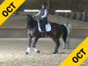 Shannon Dueck Assisting Susan Hamilton Lord Locksaly Trakehner 11 yrs. old Stallion Training: 1-2- Level Owner: Maggie Stevens Duration: 34 minutes
