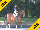 Ellen Bontje Riding & Lecturing Wisch De Je KWPN by:Rosseau 7 yrs. old Mare Training: 3rd/4th Level Owner: DesJeu Dressage Duration: 25 minutes